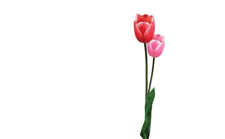 Mercat de les Flors - temporada 14-15