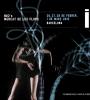 IDN (Imatge, Dansa i Nous Mitjans) 2015