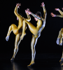 barbarians - HOFESH SHECHTER COMPANY